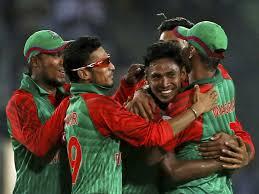 Bangladeshi tiger's