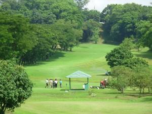 Golf_Club