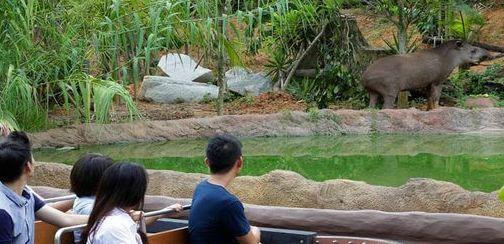 River Safari, places to visit in Singapore.